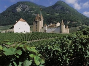 Castle and vineyard in Aigle.