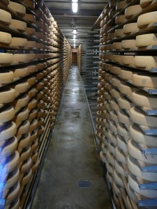 Swiss cheeses in cheese factory in Gruy?res.