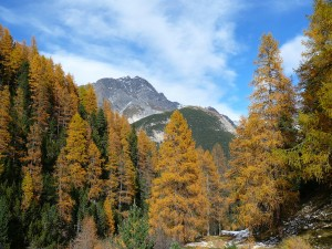 Dolina Tavrü w Szwajcarskim Parku Narodowym.